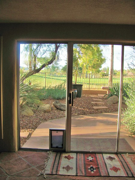 Custom Sliding Glass Door with Doggy Door Built in